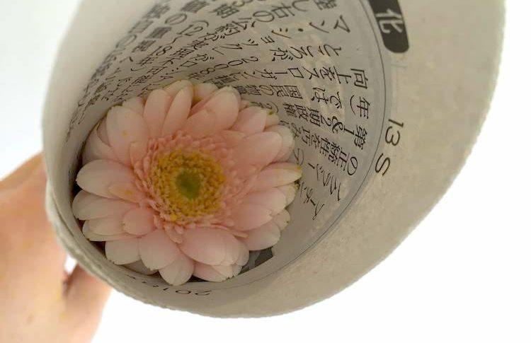 しおれた花の復活方法・手順
