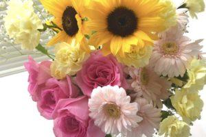 しおれた花が元気に復活